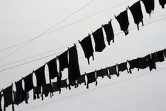 垂悬在天空前面的被洗涤的洗衣店 图库摄影