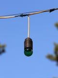 垂悬在导线的一个老绿色色电灯泡的特写镜头 免版税图库摄影