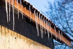 垂悬在屋顶的冰柱在冬天 免版税库存照片