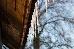 垂悬在屋顶的冰柱在冬天 库存照片