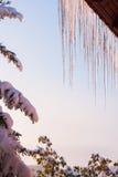 垂悬在屋顶的冰柱 免版税库存照片