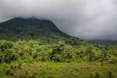 垂悬在山和密林的雷暴乌云 库存照片