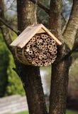 垂悬在庭院树的昆虫旅馆 免版税库存图片