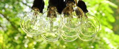 垂悬在庭院里的大电灯泡捆绑 免版税库存图片