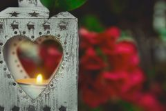 垂悬在有红色花的布什的葡萄酒金属心脏形状蜡烛台升灼烧的火焰 闪烁的闪耀的光 华伦泰 免版税库存图片