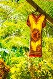 垂悬在有豪华的gree的庭院里的黄色和红色夏天礼服 库存照片