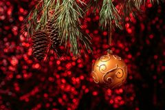 垂悬在杉木的发光的圣诞节金球分支有红色背景 免版税库存照片