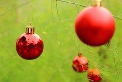 垂悬在杉树的圣诞节球 免版税库存图片