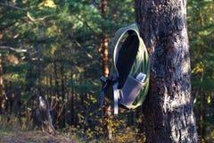垂悬在杉树的背包 库存照片