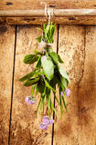 垂悬在束的被分类的新鲜的烹饪草本 免版税库存照片