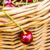 垂悬在柳条筐的一棵樱桃 库存图片