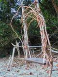 垂悬在树的一把木根摇摆椅子在海岸的海滩附近 免版税库存照片