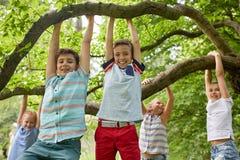 垂悬在树的愉快的孩子在夏天公园 库存照片