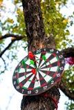 垂悬在树的掷镖的圆靶 图库摄影