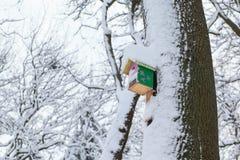 垂悬在树的木鸟舍在冬天 库存照片