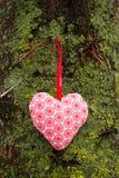 垂悬在树的爱心脏 自然本底 免版税图库摄影