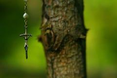 垂悬在树的耶稣受难象 库存图片