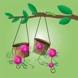 垂悬在树的花盆 免版税图库摄影