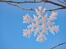 垂悬在树的雪花 库存图片