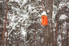垂悬在桦树的橙色木鸟舍 免版税库存图片