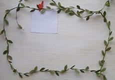 垂悬在白色木背景的晒衣夹的空白纸与从绿色叶子的框架 免版税库存图片