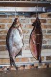 垂悬在砖墙背景的两条大熏制的鱼 免版税库存照片