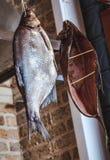 垂悬在砖墙背景的两条大熏制的鱼 库存照片