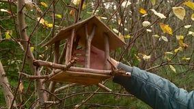 垂悬在秋天的一棵树的鸟舍 股票录像