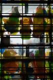 垂悬在窗口显示的五颜六色的塑料玩具,在一家零售店的闭合的门后,史泰登岛,纽约 免版税库存照片