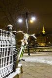 垂悬在篱芭的自行车在冬天 库存照片