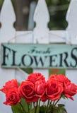垂悬在篱芭的鲜花标志 库存照片