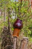 垂悬在篱芭绿色叶子的背景罐 库存图片