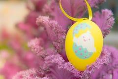 垂悬在紫色圆白菜的黄色复活节彩蛋,为传统蛋的猎人准备 免版税库存照片