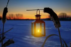垂悬在纸莎草的灼烧的灯笼在一个冻池塘 免版税库存照片