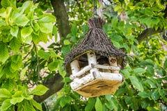 垂悬在绿色树的木鸟房子 库存图片