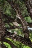 垂悬在螺纹片断的石头  免版税图库摄影