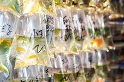 垂悬在袋子的热带鱼在通菜街金鱼市场,香港上 免版税库存照片