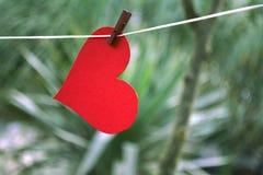 垂悬在绳索的心形的夹子 库存照片