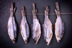垂悬在绳索的晒衣夹的干焖鱼 免版税库存照片