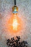 垂悬电灯泡的葡萄酒装饰在棕色墙壁上 库存图片