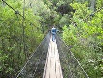 垂悬的人行桥。 图库摄影