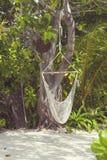 垂悬的吊床在马尔代夫 免版税库存图片