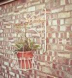 垂悬的篮子 免版税库存图片
