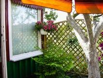 垂悬的花在庭院里 库存照片