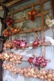 垂悬的葱和大蒜 免版税库存照片