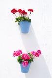 垂悬的蓝色花盆 免版税库存图片