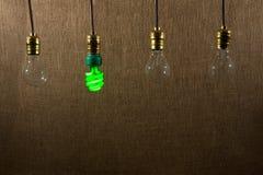 垂悬的绿色CFL和白炽电灯泡 免版税库存照片