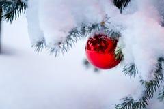 垂悬从一个积雪的圣诞树分支的明亮的红色装饰品 免版税库存图片