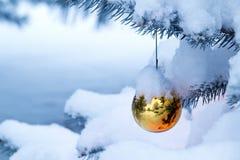 垂悬从一个积雪的圣诞树分支的明亮的金装饰品 免版税库存照片