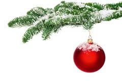 垂悬从一根积雪的枝杈的红色圣诞节中看不中用的物品 库存照片